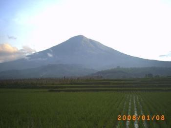 Gunung Cikuray dan Sawah yang subur - Kekayaan Alam Indonesia