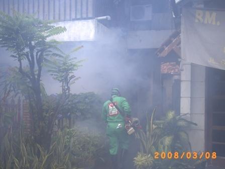 Petugas sedang melakukan fogging / penyemprotan