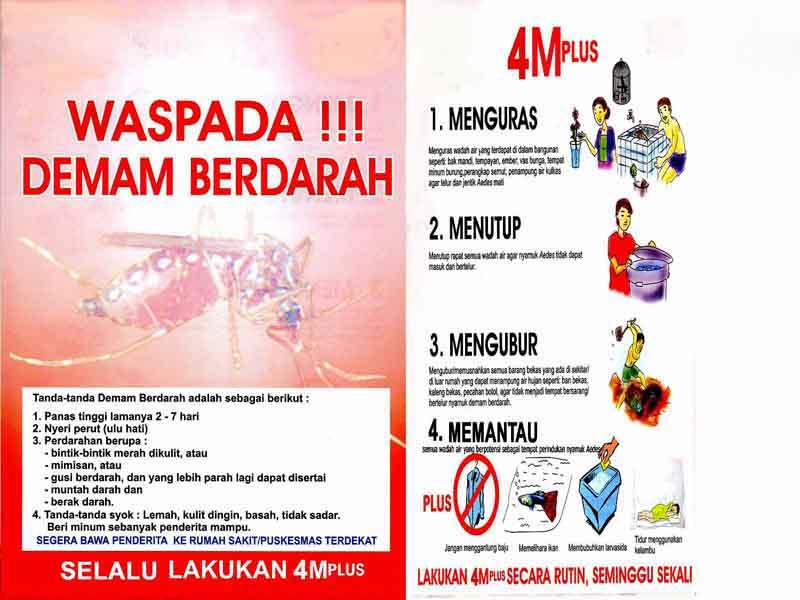 Cara Mencegah dan Menyembuhkan Penyakit Demam Berdarah Dengue (2/4)