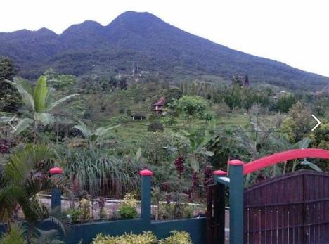 Villa 5 View