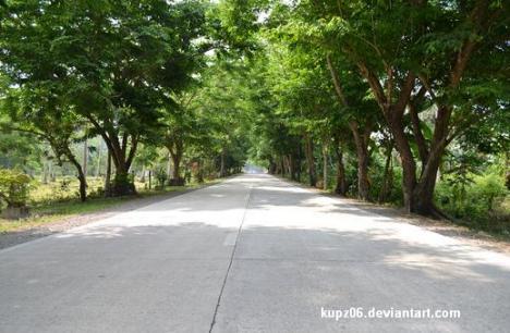 Shady Road 2